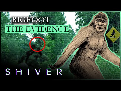 Bigfoot Sightings: Are They Hoaxes? - Boogeyman