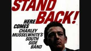 My buddy buddy friends-Charlie Musselwhite.wmv