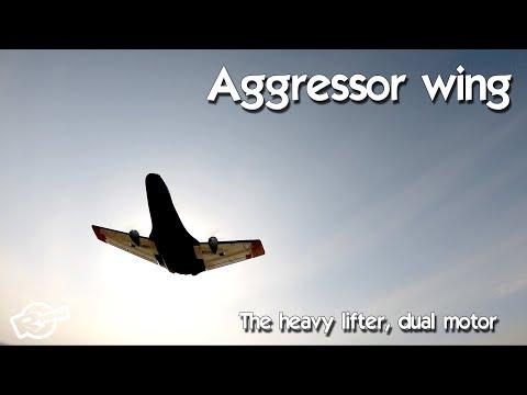 The Aggressor swept forward wing - from BangGood