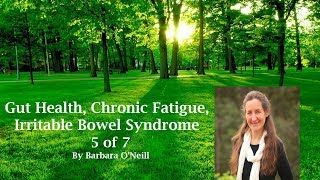 Gut Health, Chronic Fatigue And Irritable Bowl Syndrome: Barbara O'Neill