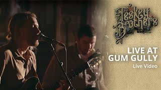 The Teskey Brothers   Live At Gum Gully