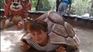Девушка черепаха, снимает панцирь!!! Смотреть ВСЕМ!! Настоящий ЗООПАРК!!
