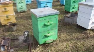 Первый полный осмотр ульев весной - Пчеловодство в корпусных