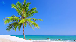 🎧 Paradise Beach On Tropical Island ☀ Beach View & Ocean  Ambience For Relaxation And Sleeping