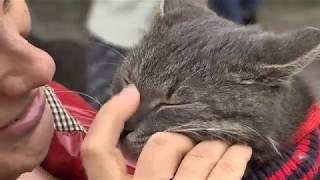 Бездомным животным в Могилеве искали  заботливых хозяев