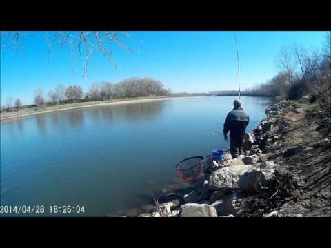 La pesca in cattura di video