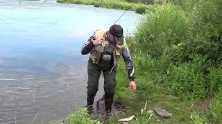 Река красивая меча липецкая область рыбалка