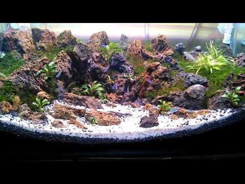 Aquascape batu
