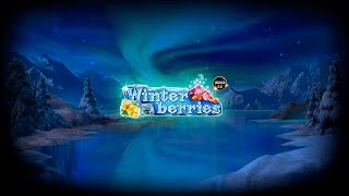 Winter Berries Video