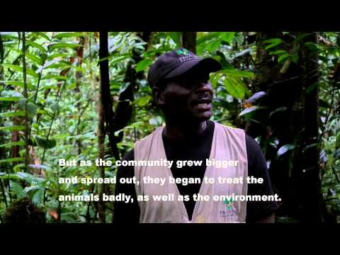 Ranger interview: my life with the deadly Golden Poison Frog