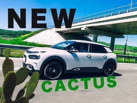 Citroen C4 Cactus Хетчбек класса C - тест-драйв 4