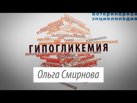 Гипогликемия. Этиология и диагностика