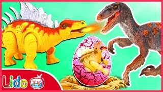 GIANT DINOSAUR EGG SURPRISE OPENING ☘ Dinosaurs Video For Kids 🔥 LidoTV