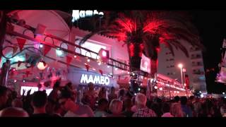 Lovely Laura Klingande and Basement Jaxx at Cafe Mambo 2015