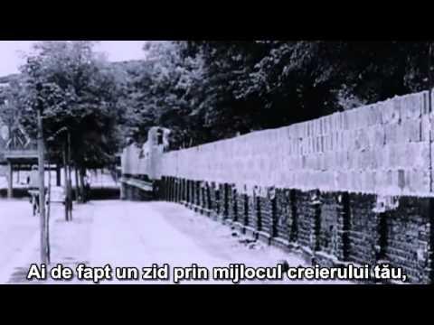 Documentar – Inteligența, interzisă