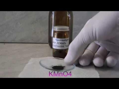Giardia canina en humanos