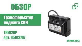Трансформатор поджига COFI TRE820P арт. 65013707