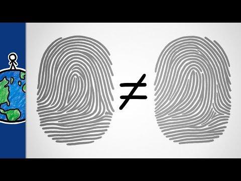 Why Fingerprints are Unique