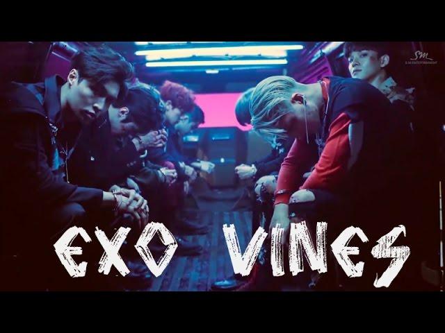 EXO VINES [FAVORITE]