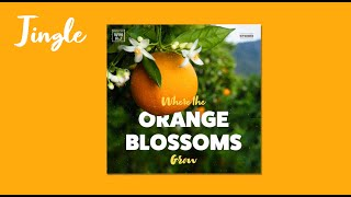 Where The Orange Blossoms Grow (The Florida Song)