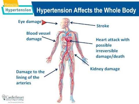 Hipertenzija magne b6
