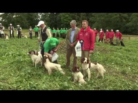 The Home International Team Competition at The CLA Game Fair 2015