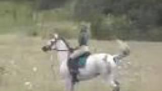 "The ""Clones"" At Horse Camp"