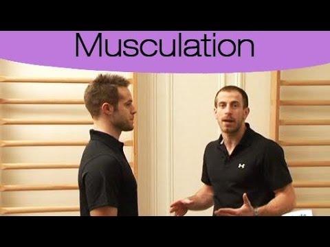 Comme intensifier les muscles par les stéroïdes