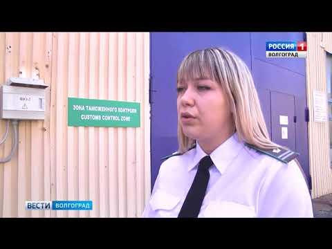 О проверке партии табака на наличие карантинных вредителей в Волгоградской области