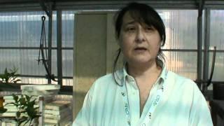 CRA Day Bagheria - Intervista all'Agronomo Adele Salamone. Utilizzo di oli essenziali. 29.10.2011