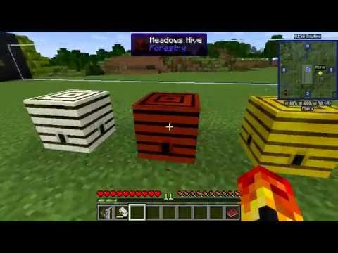 FORESTRY-BINNIE'S-MAGICAL BEES MOD - MINECRAFT 1 12 2 - BEE BREEDING