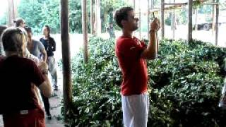 preview picture of video 'Yerba Mate Factory, Part 1'