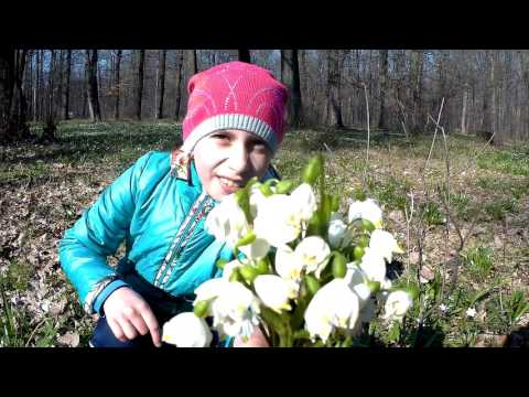 Весна 2017💗 Likecoin – криптовалюта за лайки: https://likecoin.pro/@vasil39/tib6/brh4
