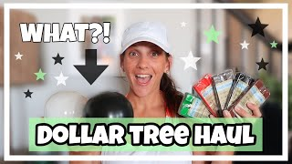 DOLLAR TREE HAUL **BRAND NEW CRAFT/DECOR ITEMS**