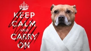 Half A Minute Of Keep Calm Posters