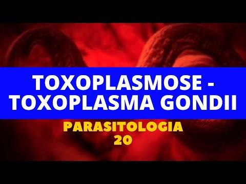 Népi gyógyszer a parazita ellen
