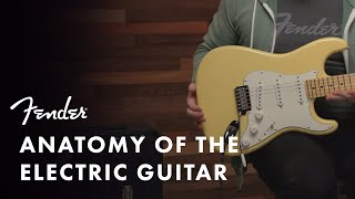 Anatomy Of The Electric Guitar | Fender
