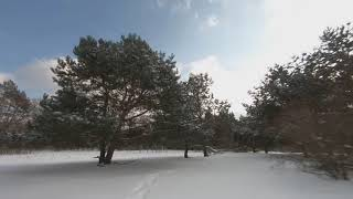 Flying FPV in -8 degrees! My friend's TBS Tango 2 wasn't working in this cold!