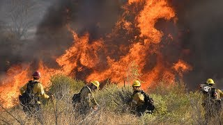 video: Tens of thousands evacuated as wildfires rage in California