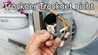 Wäschetrockner selbst reparieren Thermostat defekt
