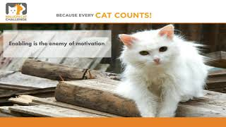 The Million Cat Challenge: Helping vs Enabling: Knowing the Difference Made All the Difference!