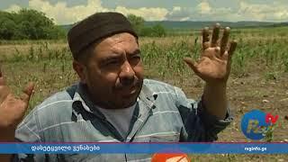 გურჯაანში სამი სოფელი დაისეტყვა