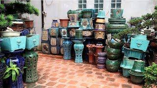 Địa chỉ đáng tin cậy mua chậu Bonsai, cây cảnh ở Hà Nội