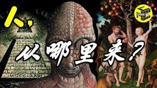 如果进化论是都市传说 那么人类的起源是什么呢?伏羲女娲是蜥蜴人?共济会和阴谋论 [脑洞乌托邦 | Mystery Stories TV]