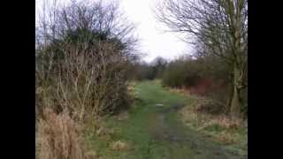 preview picture of video 'A Country Walk - A one year timelapse project'