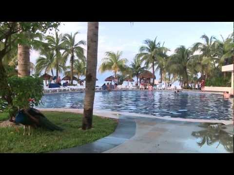 Cancun  Grand Oasis Palm Resort  BookIt com Guest Reviews