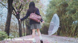 【拍照实录001】阴雨天紫荆花JK制服实拍 A7M2&fe85 美科50