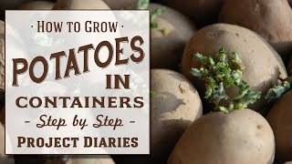★ How to: Grow Potatoes in Containers (Step by Step Guide)