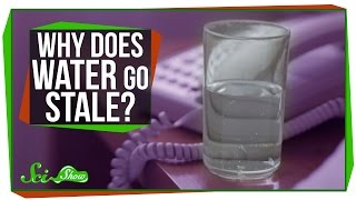 Why Does Water Go Stale Overnight?