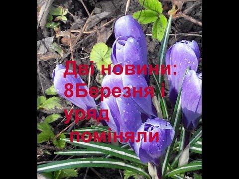 Дві новини - Свято Клари Цеткин і зміна уряду в Україні